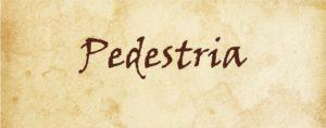 Logo Pedestria